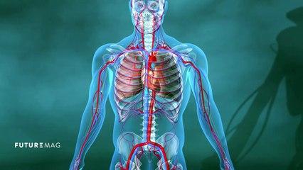 Le coeur artificiel est-il viable ? - FUTUREMAG - ARTE