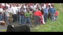 Amazing Bullfighting Festival - Bull Fighting Accidents #2 - CRAZY Funny Videos Try Not to Laugh