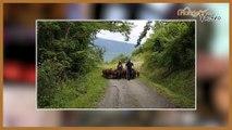 Maurienne Retro # 32 La ferme des Cathelins