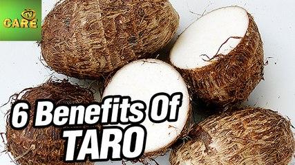 6 Amazing Benefits Of Taro | Care Tv