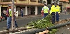 Un hombre se salva al irse encima de unas palmeras al suroeste de Guayaquil