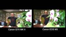 Canon G7X Mark II vs Canon EOS M3 Vlogging Camera Test Comparison