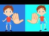 Kopf, Schultern, Knie und Zehen Kinderreim für Kinder | Lied für Kinder in Deutsche