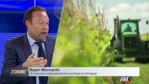 Bayer-Monsanto : une fusion à 66 Milliards $, et la naissance d'un géant chimique qui inquiète les anti-OGM.