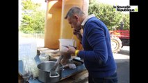 VIDEO. A Mont-près-Chambord, on accueille toutes les vendanges