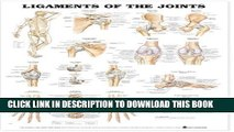 Collection Book Ligaments of the Joints Anatomical Chart