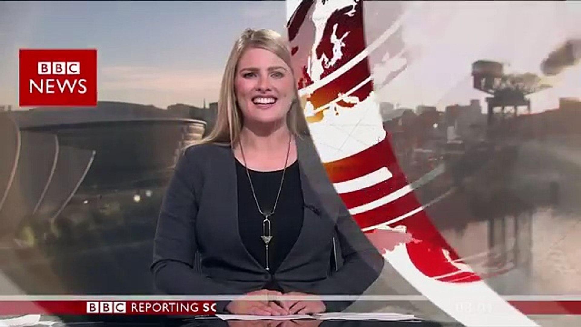'Giant' wasp invades BBC Scotland news camera - BBC News
