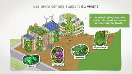 Bâtiment et biodiversité.  Et si l'on pensait les villes et les bâtiments comme des écosystèmes.