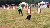Sophie avec Heaven et Gin concours agility Tiercelet 18/09/2016