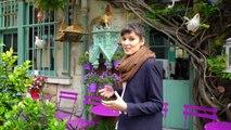 Bouef en Croûte & Notre Dame | Rendez-vous à Paris 2