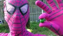 Spiderman Vs Spidergirl - Superhero Battle! w_ Hulk and Joker Superhero Time Adventures Episode 3_5!-r51UaCnaWcc Spiderman Vs Spidergirl - Superhero Battle! part 4