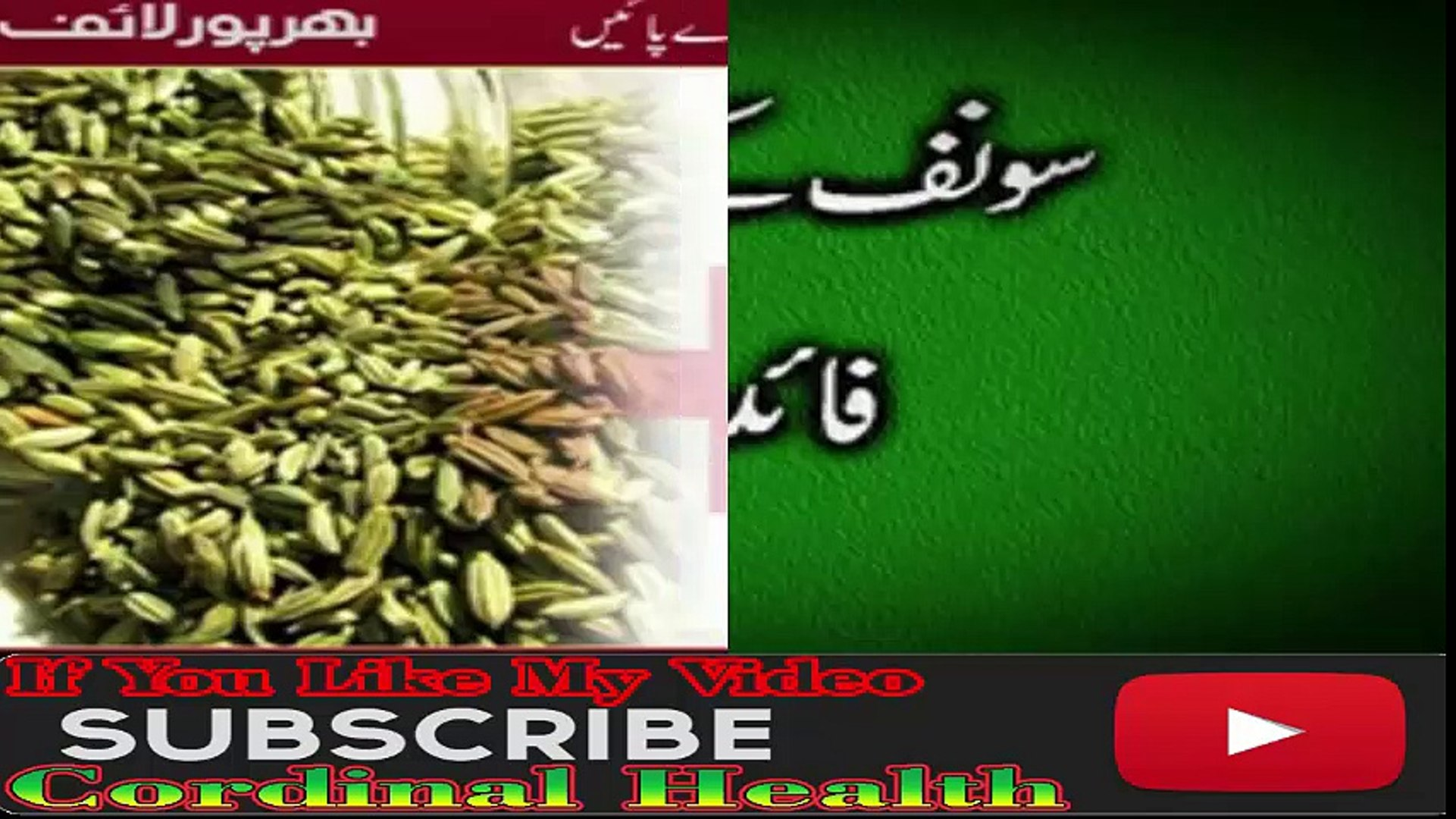 Sonf Ke Fawaid SONF (FENNEL SEED Health and Beauty benefits of Saunf Fennel
