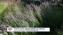 Budget participatif - Scène verte