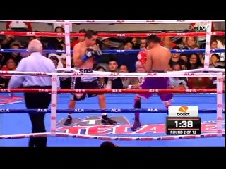 Donnie Nietes vs. Edgar Sosa Full Fight