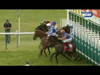 CHEVELEY PARK STAKES, G1, NEWMARKET (UK), 2016-09-24