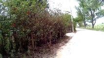 4k, Ultra HD, Mtb, 10 amigos, 58 km, trilhas do Vale do Paraíba, Vale Encantado, fazenda Pedra Branca, Estrada da Pedra Branca, Bike Soul SL 129, 24v, aro 29, Caçapava, Taubaté, SP, Brasil, 2016, (6)
