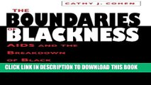 Collection Book The Boundaries of Blackness: AIDS and the Breakdown of Black Politics