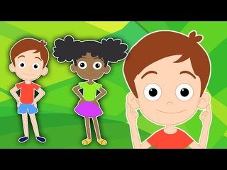 Tête, épaules, genoux et orteils   Cartoon pour les enfants   Populaire Comptine