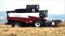 Комбайн ACROS 585 на уборке озимой пшеницы