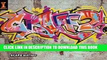 Graff 2: Next  Level Graffiti Techniques Paperback