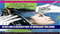 PDF] A Colorful Introduction to the Anatomy of the Human