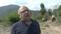 Rishfaqet dermatoza, në Librazhd zbulohet një lopë - Top Channel Albania - News - Lajme