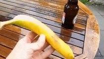 Astuce de fou : Comment ouvrir une bouteille de bière avec une banane ?