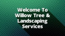 Willow Tree & Landscaping Services : Tree Trimming Service in Bucks County