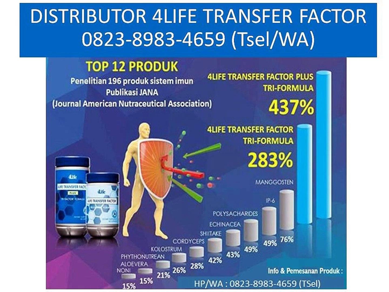 0823 8983 4659 Tsel Distributor Produk 4life Transfer Factor Indonesia Video Dailymotion