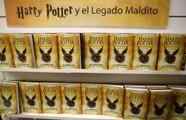 El nuevo libro de Harry Potter