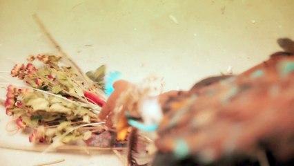 Leyla McCalla - Little Sparrow [Official Music Video]