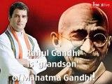 Rahul Gandhi is grandson of Mahatma Gandhi!