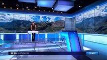 Hautes-Alpes: des parcelles d'alpages déplacées pour étudier le réchauffement climatique