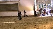 carrousel poney centre equestre restaurant le comte hem