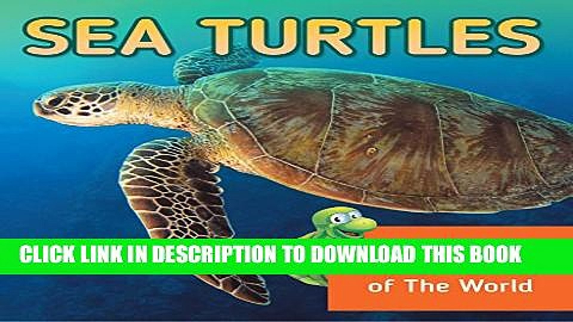 [PDF] Sea Turtles: Fun Facts About Turtles of The World: Marine Life and Oceanography for Kids