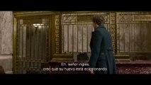 Animales fantásticos y dónde encontrarlos - Trailer Final subtitulado en español (HD)