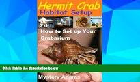 Big Deals  Hermit Crab Habitat Setup  Hermit Crab care and Habitat Set-up  Best Seller Books Most