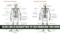 New Book Skeleton: Bones, Joints And Ligaments Chart
