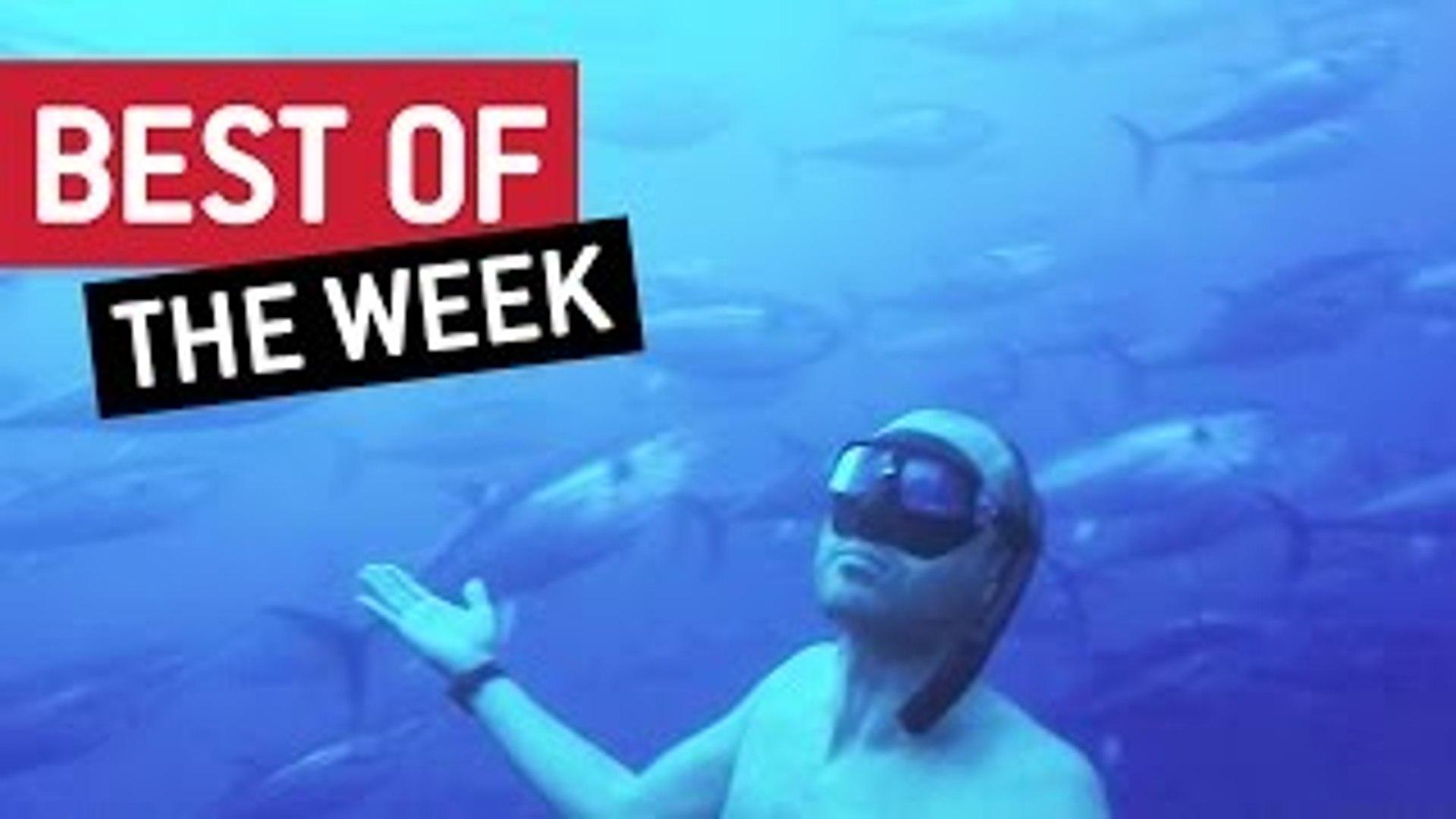 Best Videos Compilation Week 4 October 2016 || JukinVideo