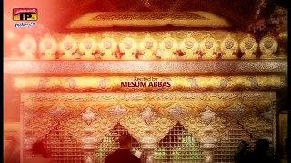 Rona Bhi Hai Baba Pe - Mesum Abbas - 2016-17 - TP Muharram 2016-17