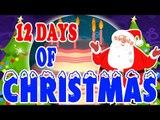 Doze dias do Natal | 12 dias de Natal | Melhores Canções de Natal | Canção de Natal