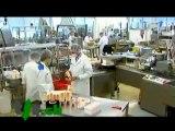 Chemtrails et morgellons (partie 3) projet 2025