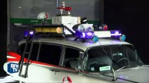 SOS Fantômes, Jurassic Park… des voitures de films cultes exposées au Mondial de l'Auto