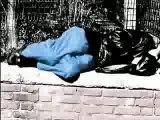Adidas Adicolor Blue