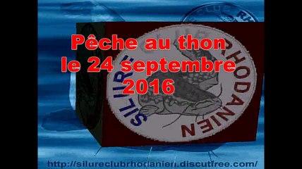 Journée de pêche au thon