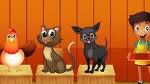 Pazara Gidelim - Bir Kedi Alalım - Popüler Çocuk Şarkısı   Cocukca