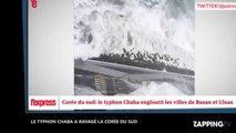La Corée du Sud ravagée par le typhon Chaba, les images impressionnantes (Vidéo)