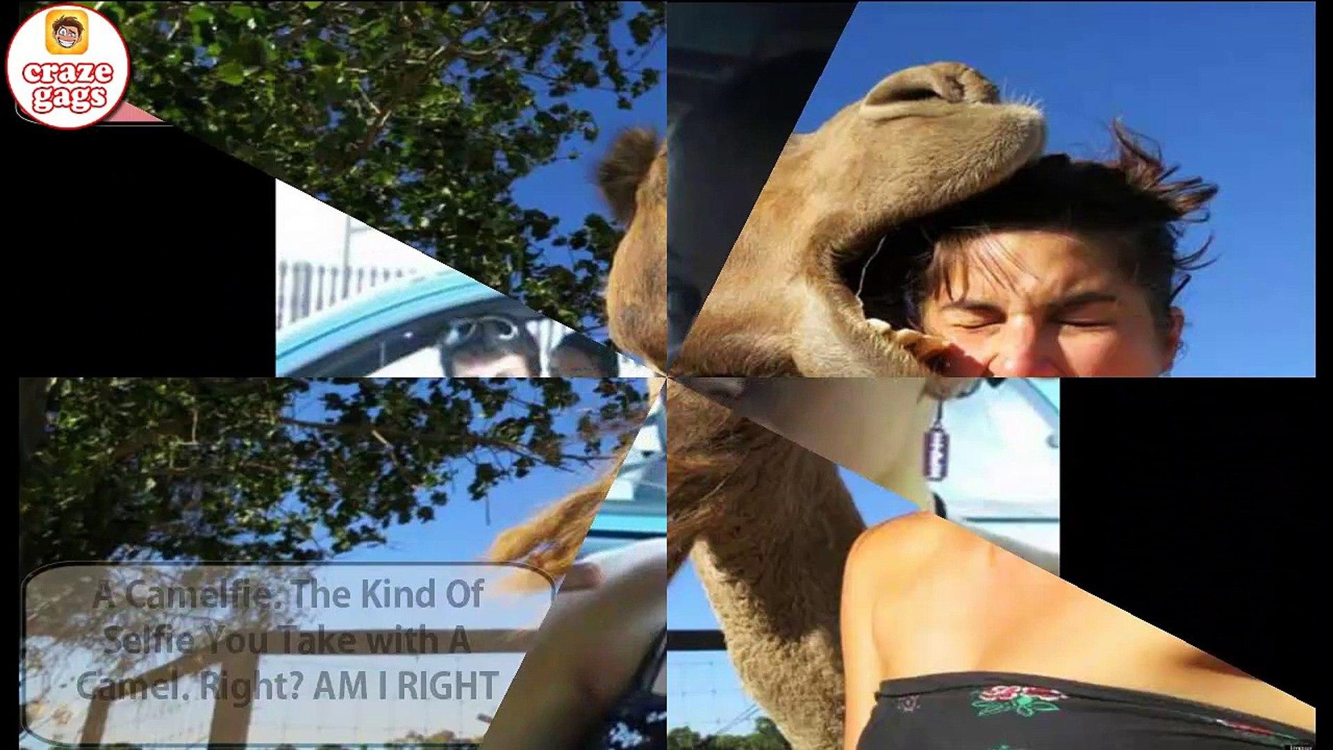 Selfie Fails -funny selfie girls - girl sexy fails compilation 2016