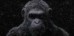 La guerra del planeta de los simios - Teaser tráiler New York Comic-Con