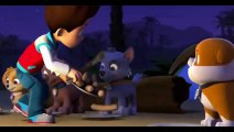 PAW Patrol pups save a mer pup Clip 1